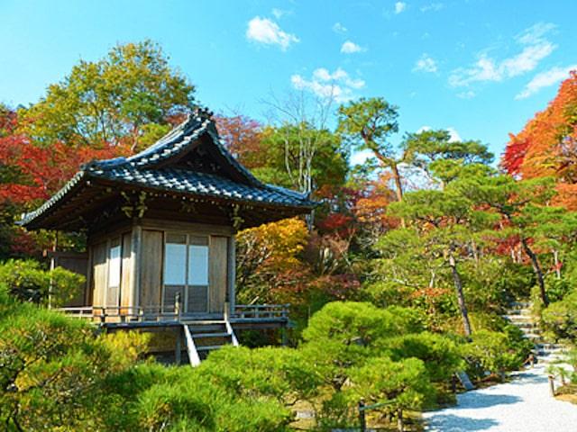 一年中魅力満載の京都イメージ