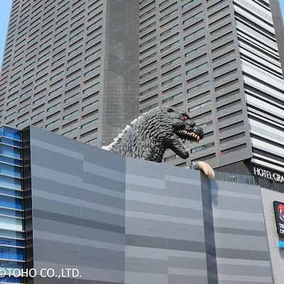 ホテルグレイスリー新宿イメージ