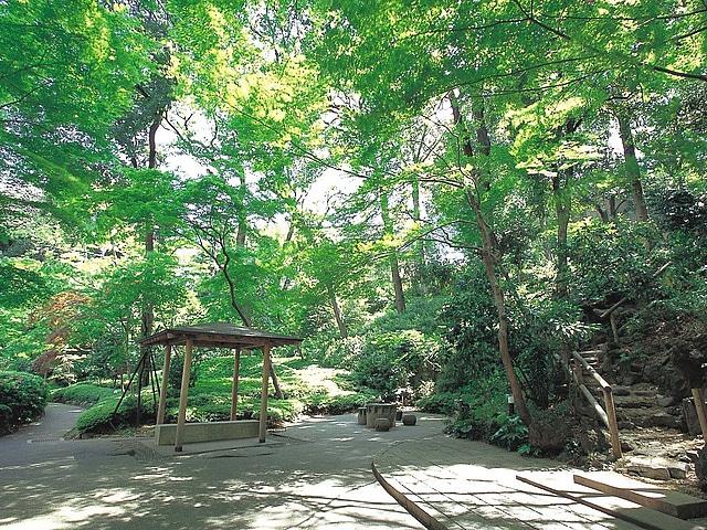 【白金台】シェラトン都ホテル東京 庭