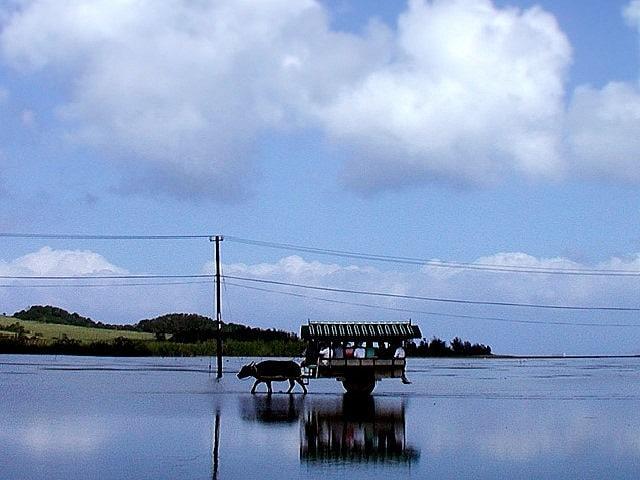 西表・由布・小浜島3島周遊日帰り観光付プランイメージ