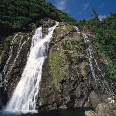 屋久島イメージ