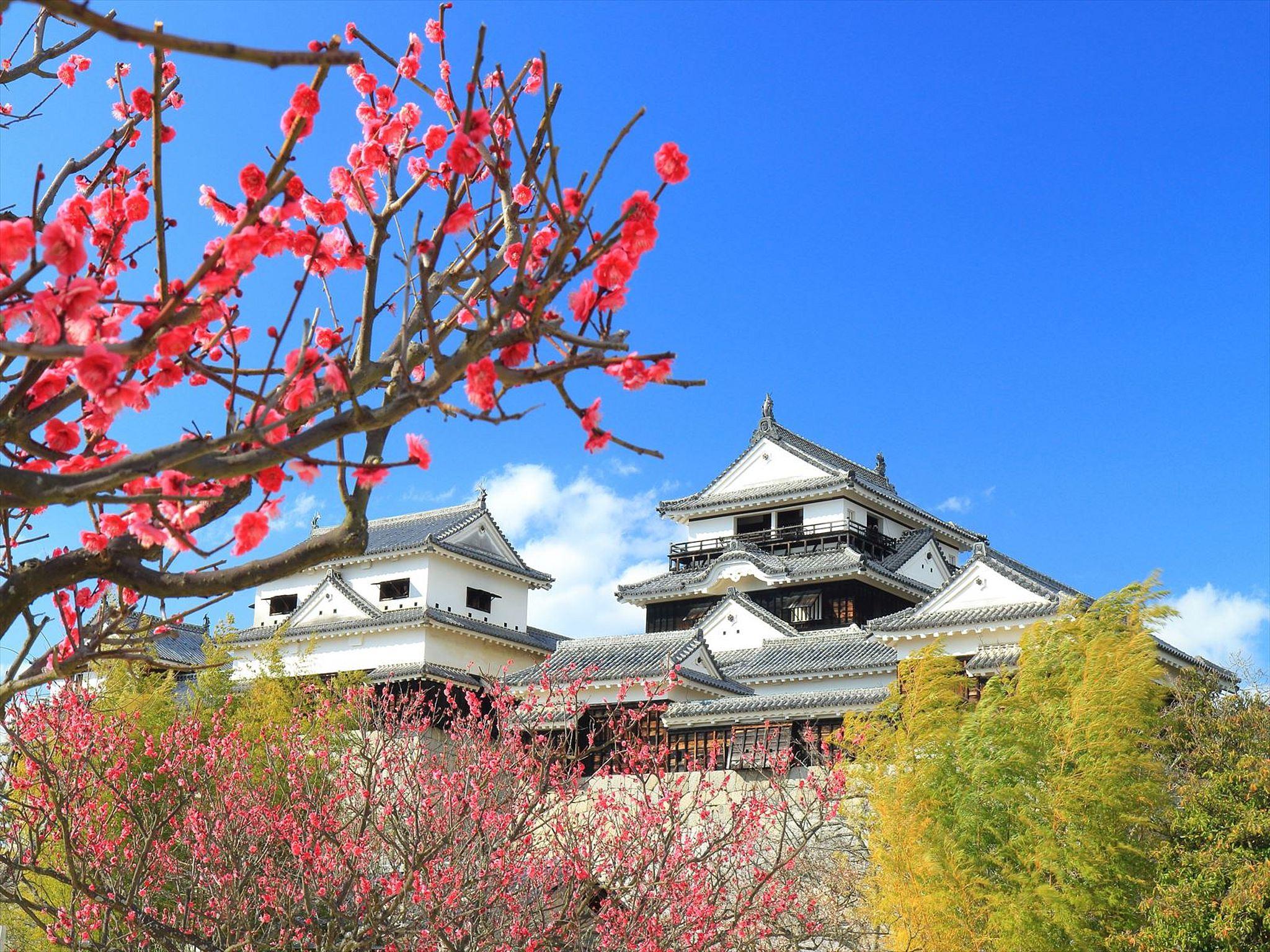 愛媛県のホテル