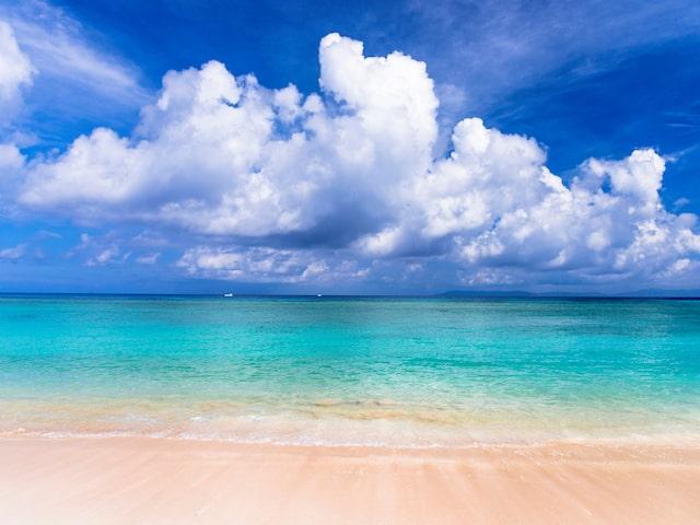 波照間・西表・由布島最南端と秘境西表日帰り観光付プランイメージ