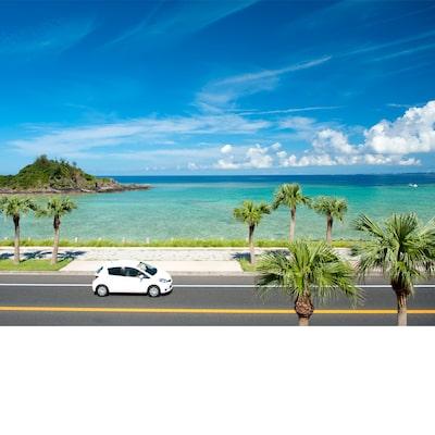 沖縄フリープラン