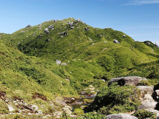 専属ガイドと行く!宮之浦岳登山コース付イメージ