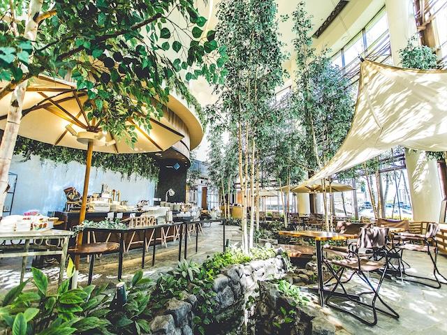 ホテルマイステイズプレミア札幌パーク レストラン「Farm to Table TERRA」