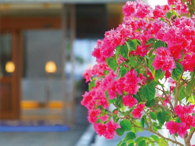 オクマ プライベートビーチ & リゾート