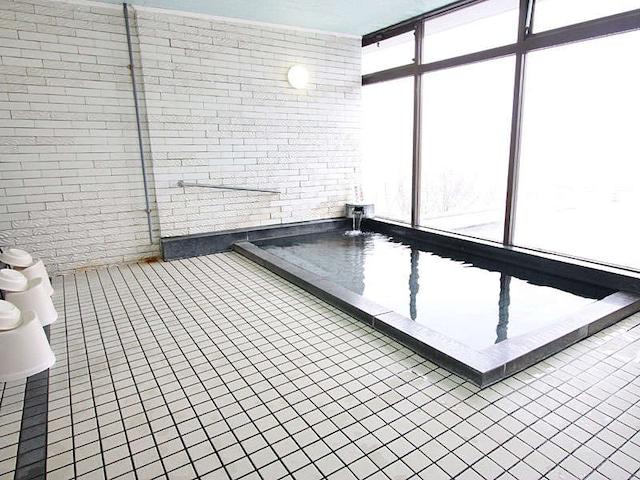 湖山温泉 ホテルウェルネス因幡路 大浴場