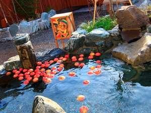 天然温泉 岩木桜の湯 ドーミーイン弘前 変わり湯