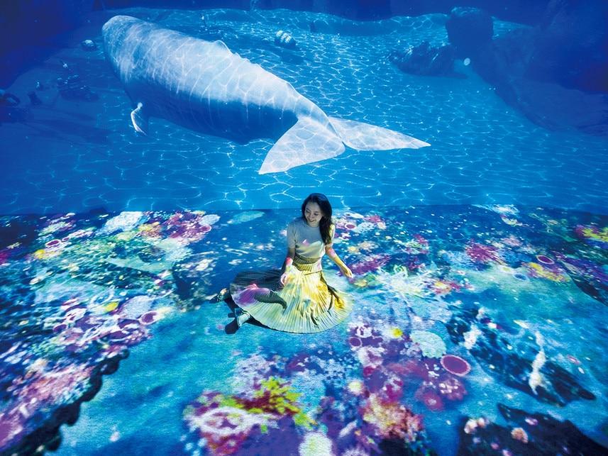 海のファンタジア