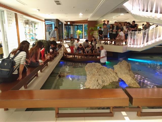 シェラトン沖縄サンマリーナリゾート シェラトンタッチプール
