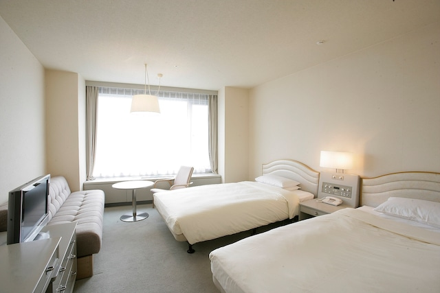 新富良野プリンスホテル 十勝岳側高層階ツインルーム