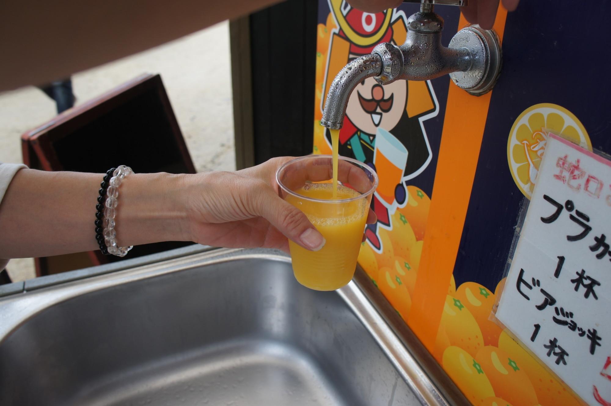 蛇口からみかんジュース体験